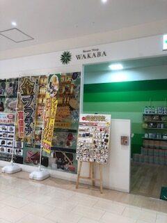 2F WAKABA:イメージ