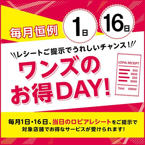 毎月1日・16日はワンズのお得DAY!